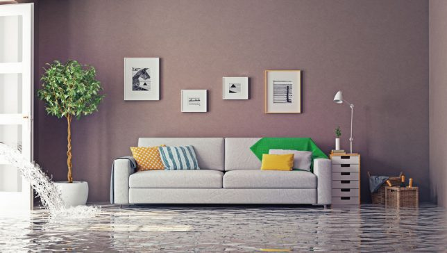 How to Minimize Water Damage Repairs