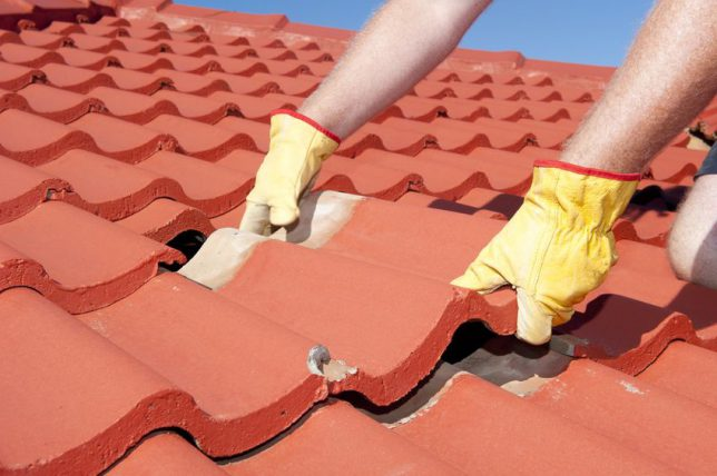 What To Do When You Have A Roof Leak