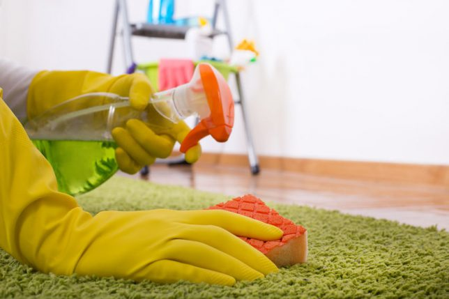 Tips For Carpet And Rug Cleaning